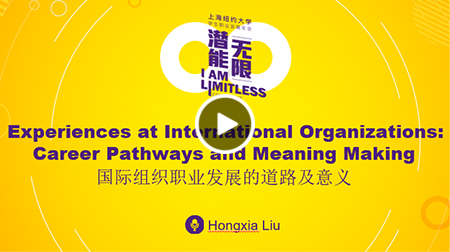 Experiences at International Organizations: Career Pathways and Meaning Making