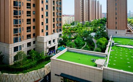 NYU Shanghai 360 Tour
