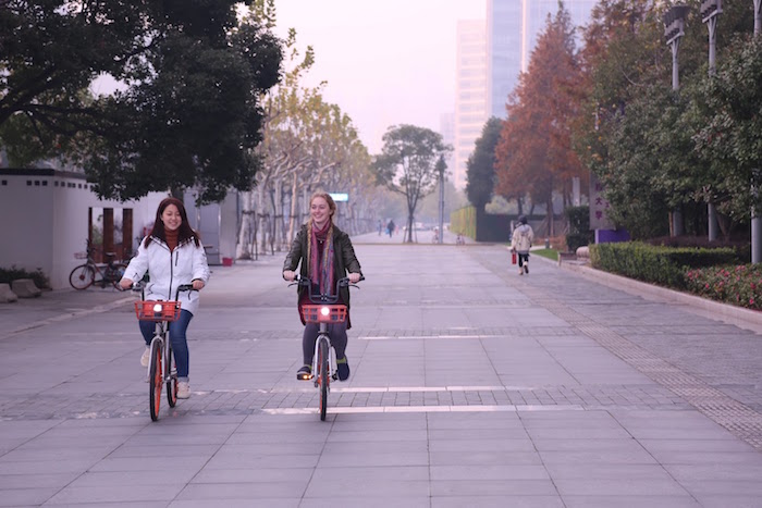 roommates_bikes