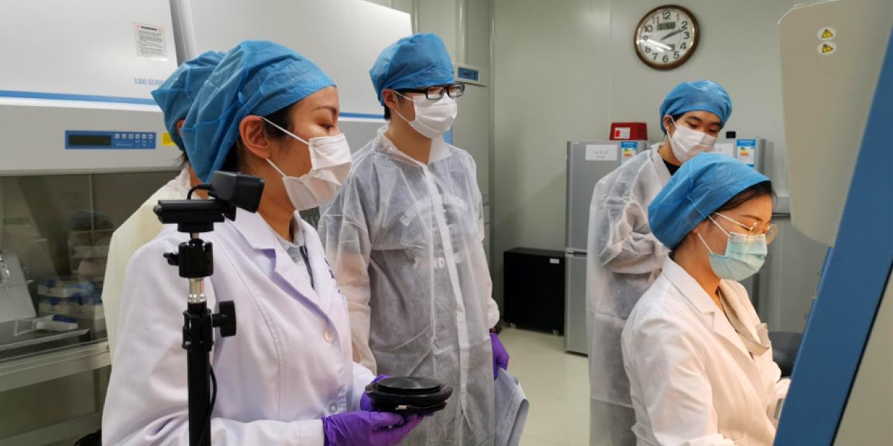 The advanced cell biology lab reopened this week, enabling Associate Professor of Practice in Biology Li Wenshu to lead hands-on live cell experiments with students in Shanghai, while the rest of class watched remotely.