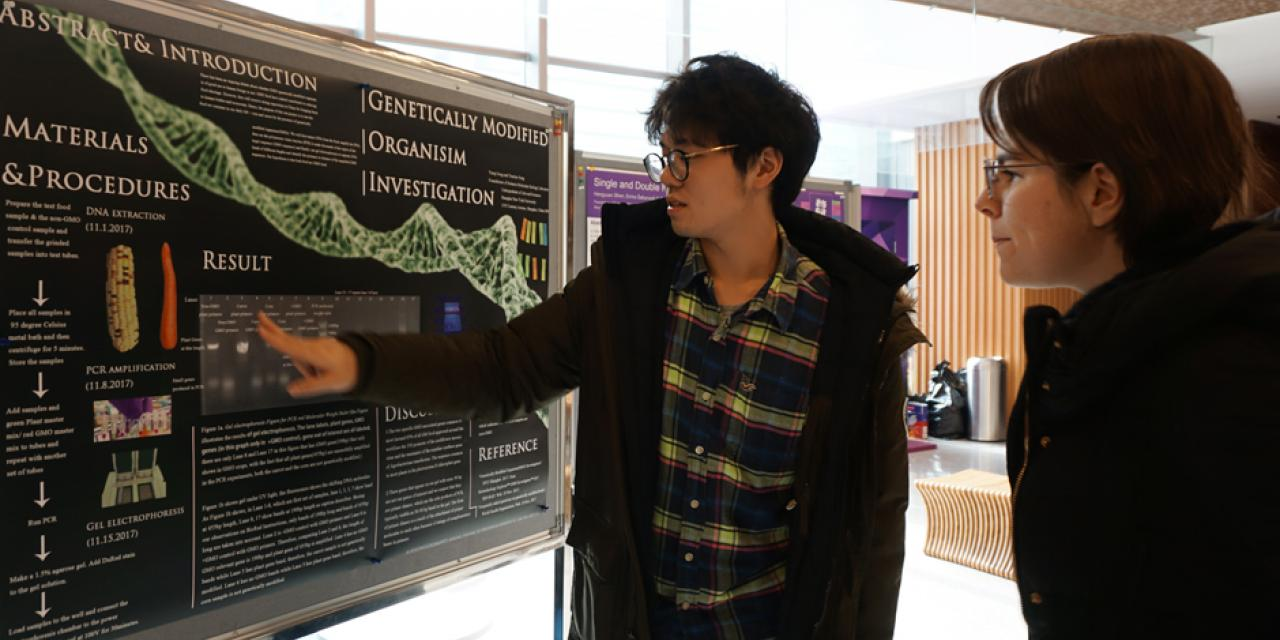 On December 6-7, nineteen students presented their work at the Molecular Biology Lab poster symposium in the 2F Cafe. The theme of this year was DNA editing, with a focus on Genetically-Modified Organism(GMO) Detection and Restriction Enzyme Digestion. Many students investigated whether fruit or vegetable samples were genetically modified or not by using the application of PCR and electrophoresis. (Photo by: NYU Shanghai)