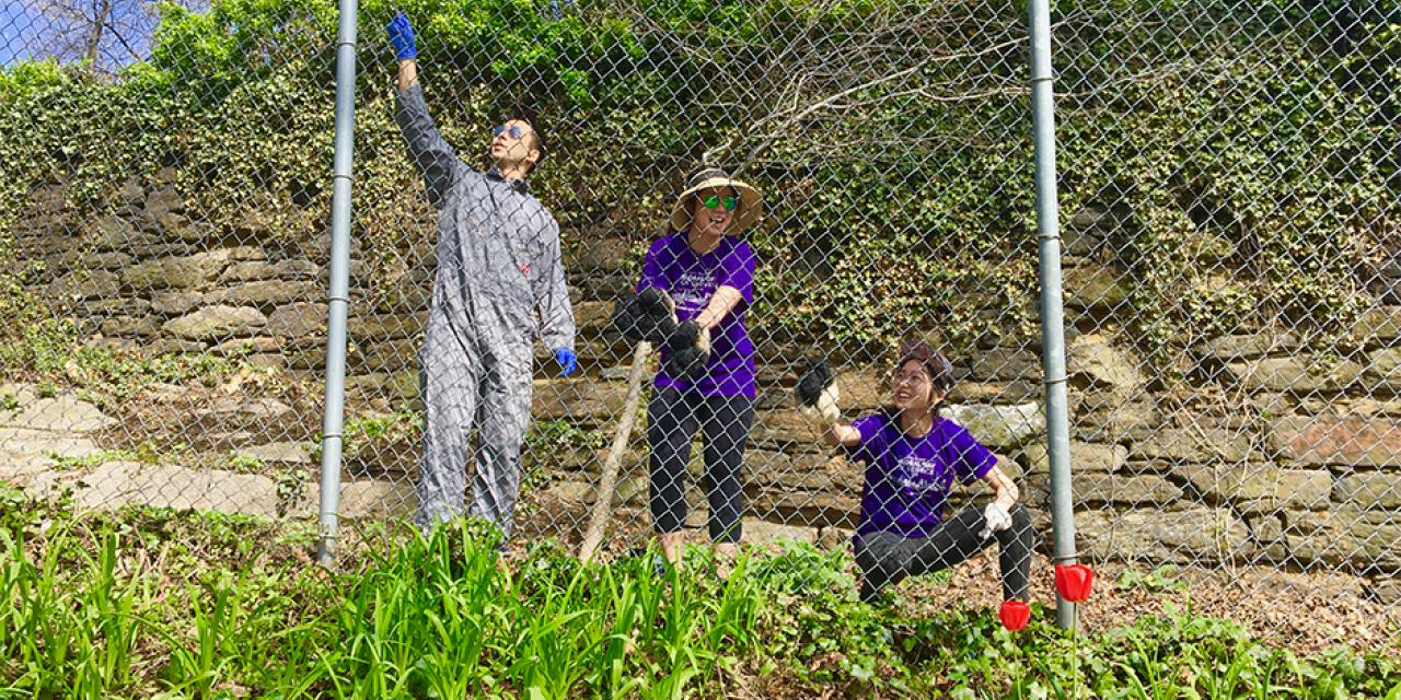 "On behalf of NYU's second annual Global Day of Service on April 28, a group of NYU Shanghai and NYU alumni helped with the revitalization a national landmark, New York City's Fort Tryon Park. ""It was amazing to be able to take a step back and appreciate nature while restoring one of the city's gems."" said Mike Chen '17, Global Alumni Chair of NYU Shanghai."