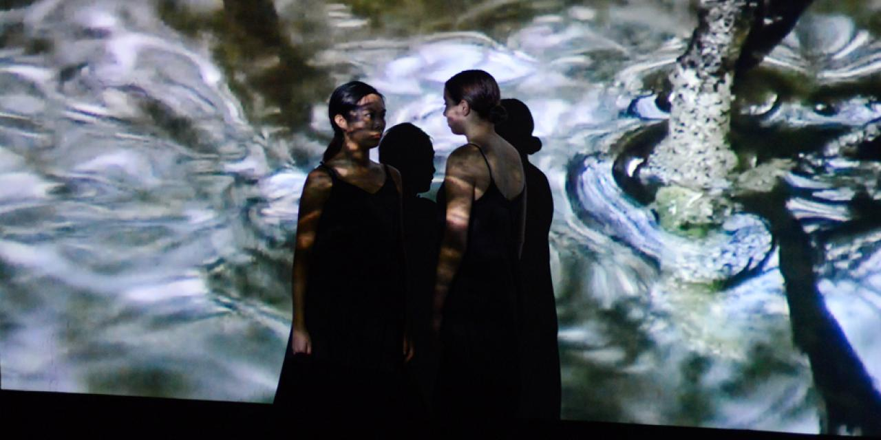 Students Janice Luo and Isabel Adler merge performance art with projection art. (Photo by: Michael Shi and Charlie Wang)
