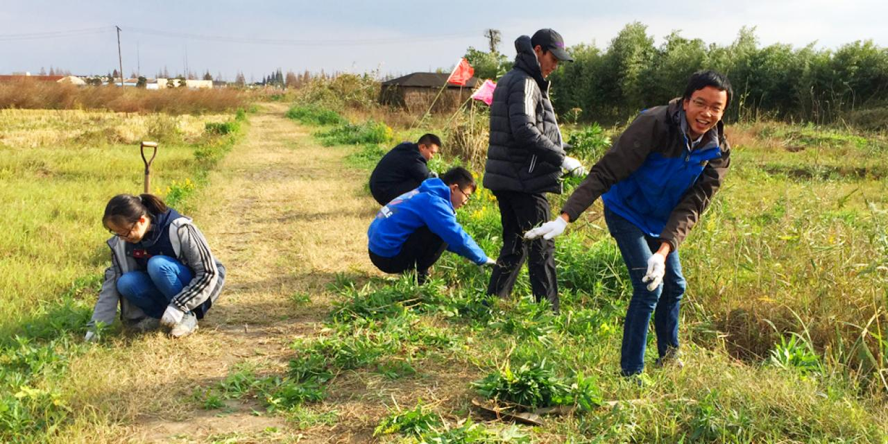 Scholars from Yunnan Green Development Foundation Group went to Cenggu Eco Farm in Qingpu to help with weeding and learn about the preserving the health of wetland ecosystems.