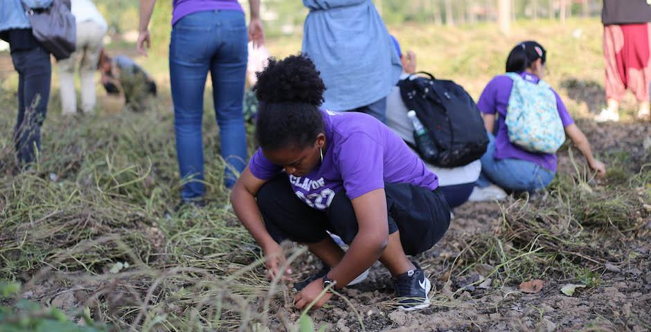 On Sept 30, Mahder Teshome '22 and her fellow teammates spent two hours helping local families harvest peanuts and cotton. Many HIV/AIDS-affected families live in extreme poverty and rely on subsistence farming. (Photo by Takumi Miyawaki, NYU AD '20)