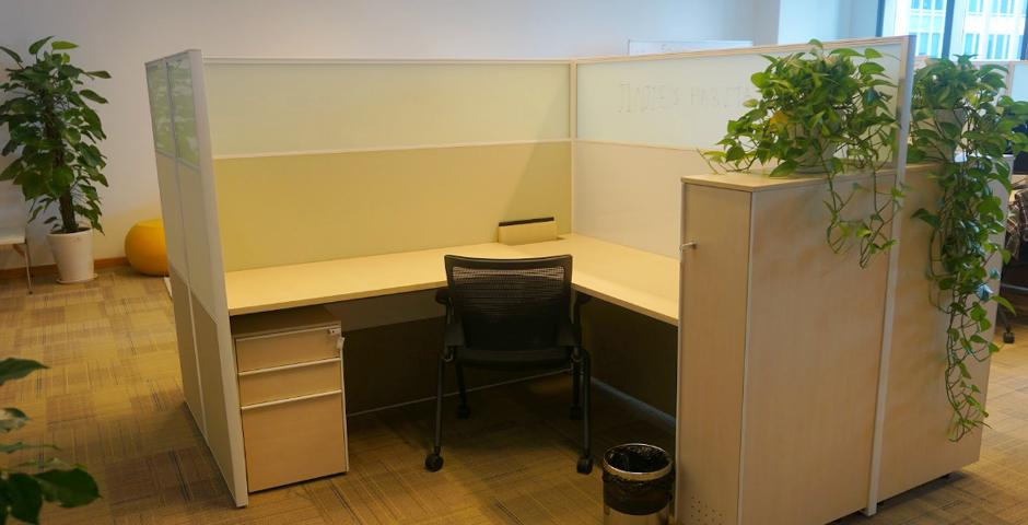 PhD Office, Room 1233, Pudong Campus. NYU Shanghai PhD students can come to this office to study and work on their research. It is also an office space for NYU Shanghai Graduate Dissertation Fellows. The space includes 18 cubicles with storage units, a kitchenette, and lounging areas.