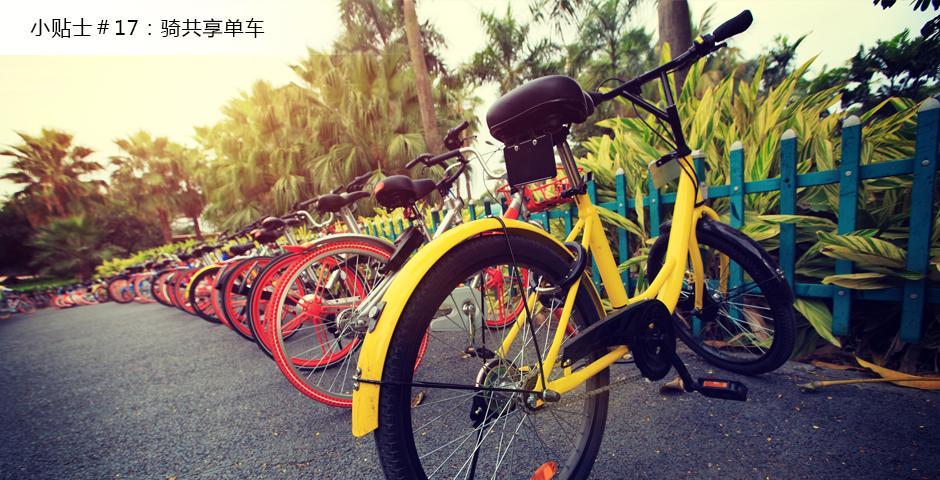 共享单车真的很便宜,也方便,可以一边骑行一边探索上海。有很多种共享单车可以选择,摩拜、小黄车OFO,还有一个忘了叫什么名字的小绿车。短距离骑行,只用花一块钱,这样,你就有更多的钱可以去和朋友探索新的餐馆或咖啡馆了。-- Lyndsy Qu,2019届